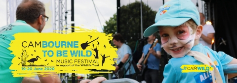 Boy watches band at Cambourne to be Wild Festival