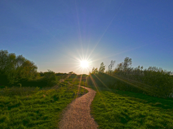 Cambourne Nature Reserve