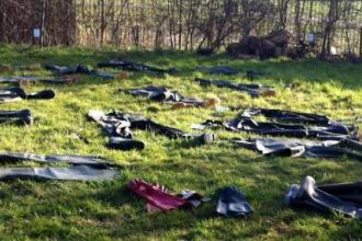 Waders drying in the sun