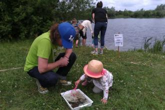 Pond dipping with volunteer Caylin Gans