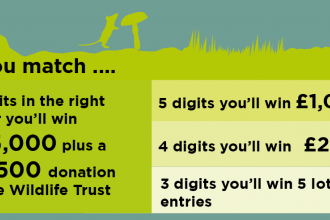 Wildlife Trust Lottery, click here