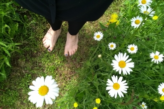 Bare feet on grass with oxeye daisies