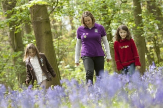 Children in bluebell wood with Wildlife Watch Club
