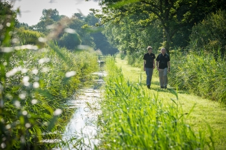 People walking along a path in a wetland nature reserve