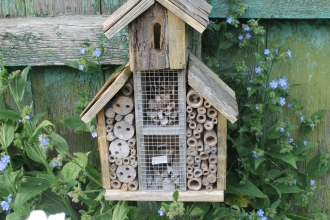 A bug hotel for mason bees