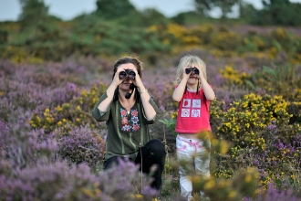 Bird watching on a heathland