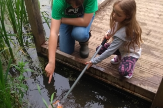 Nene Wetlands pond dipping
