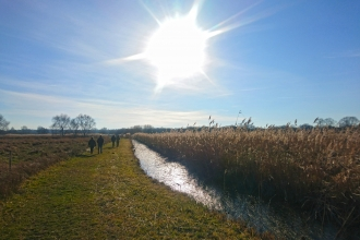 People walking at Woodwalton Fen