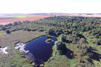 Great Fen - Woodwalton Fen