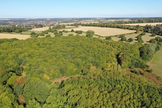 Drone's eye view of Park Wood LNR