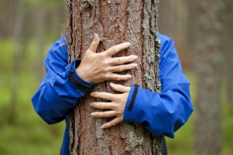 Person hugging tree