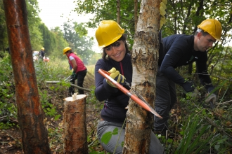 Young person coppicing