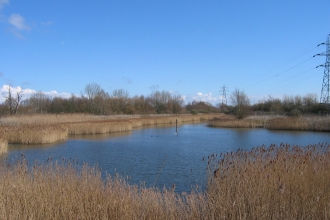 Woodston Ponds Nature Reserve