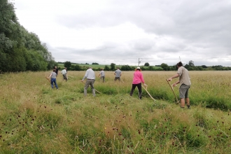 A group of people scything
