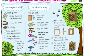A how-to sheet for building an insect hotel