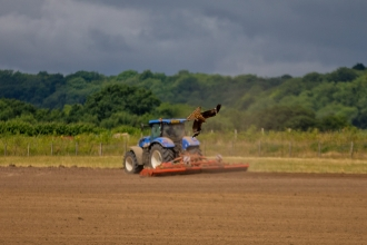Red kite in front of a tractor
