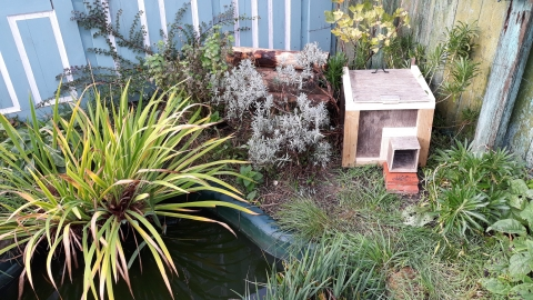 A hedgehog house in Becky Mayes's garden