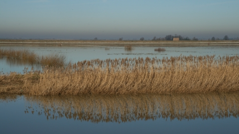 Ouse washes credit. Pat Doody