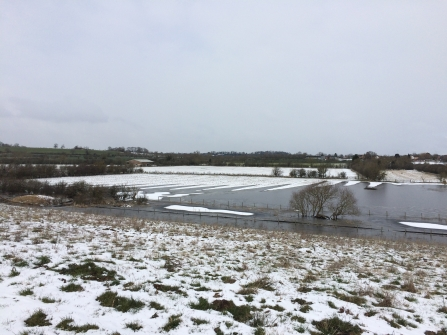 Snow at Lilbourne Meadows