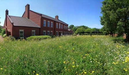 The Manor House - Wildlife Trust BCN