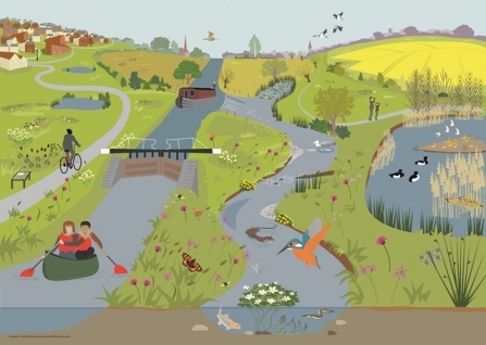 Nene valley illustration by Rachel Hudson