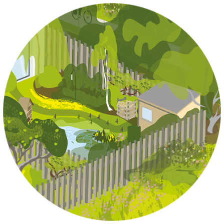 A cut-out from the main illustration showing a back garden with a shed and pond