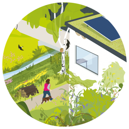 A cut-out from the main illustration showing a house with a solar panel and birds flying around.