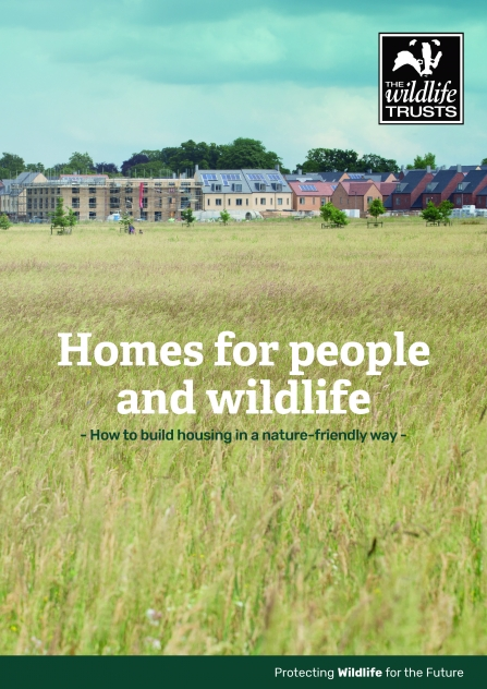 The cover showing a photograph of Trumpington Meadows