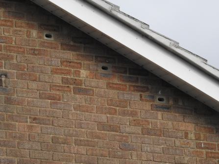 Swift nest bricks with discreet entrance holes under the eaves of a house