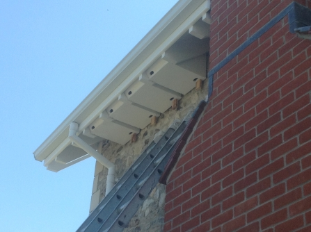 A set of four swift boxes affixed to a wall under the eaves of a roof