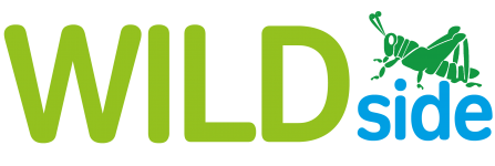 WILDside logo