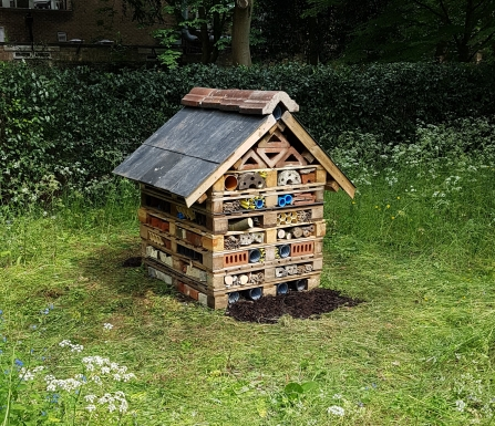 Downing College's bug hotel