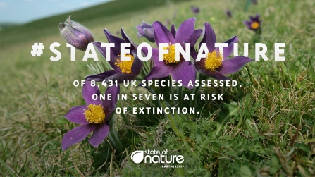 State of nature - 1 in 7 species at risk of extinction