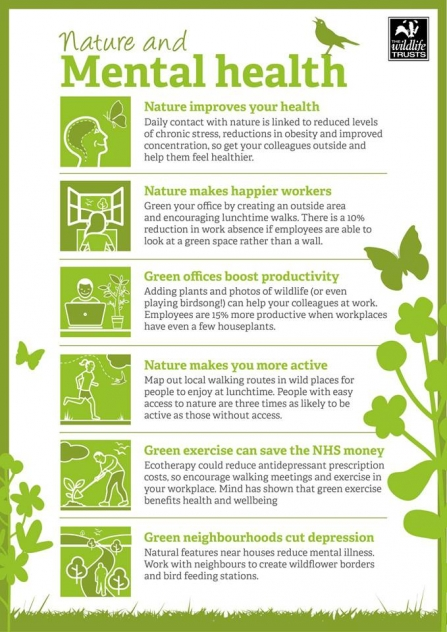 Nature and Mental Health Infographic