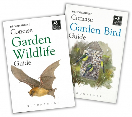 The cover of the Concise Garden Wildlife Guide and the Concise Garden Bird Guide