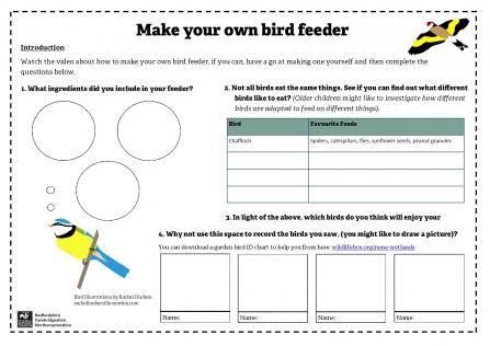 Make a bird feeder worksheet