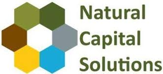 Natural Capital Solutions