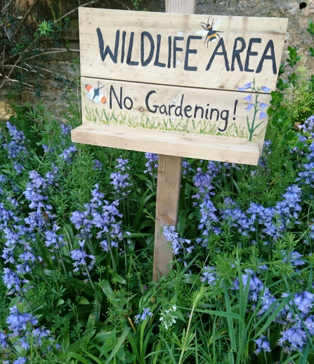 """Wildlife Area - no gardening!"" sign amidst an array of wildflowers in a garden"