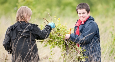 Local school children cut and collect growing tree saplings