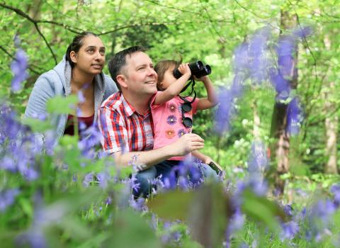 Family in bluebell woodland