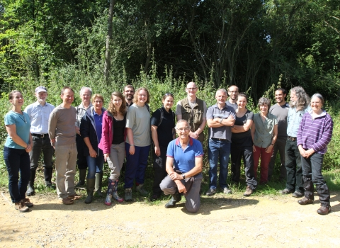 Ecology Group volunteers at Brampton Wood NR