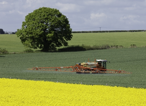 Crop spraying on a green field bordered by a field of oil seed rape