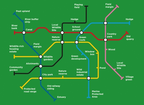 Nature Recovery Map visualised as a tube map